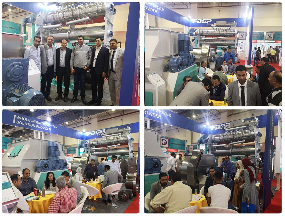FDSP appears at Agrena2019, Egypt with new equipment